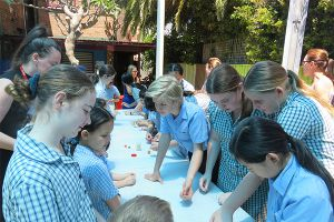 St Mary's Catholic Primary School Erskineville News and Events 1